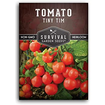 Survival Garden Seeds - Tiny Tim Tomato Seed for Planting - Packet with Instructions to Plant and Grow Your Home Vegetable Garden - Non-GMO Heirloom Variety