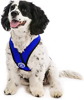 Gooby - Comfort X Head-in Harness, Choke Free Small Dog Harness with Micro Suede Trimming and Patented X Frame