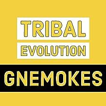 Tribal Evolution