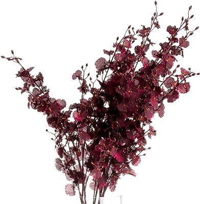 The Recipe 20906 Spray orchidée Bordeaux Profond, Multicolore, 19,6 cm