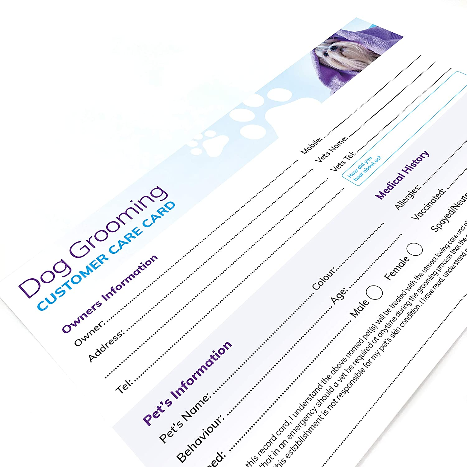 Dog Grooming Customer Care Record Cards 21x pack : Amazon.co.uk With Dog Grooming Record Card Template