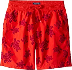 Tortues Flockées Swim Trunk (Big Kids)