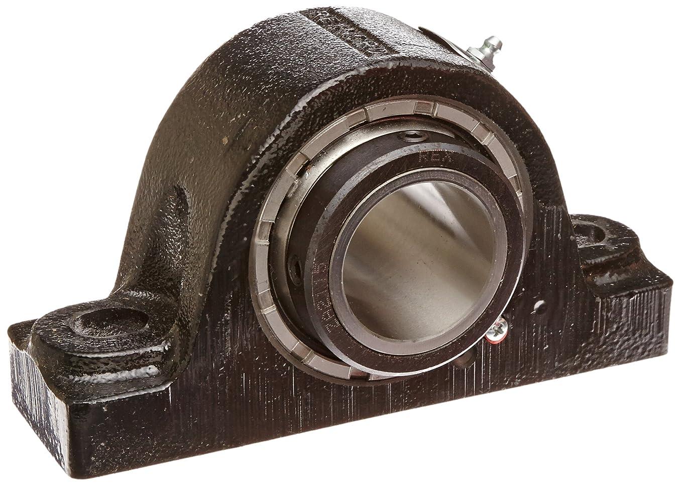 Rexnord ZA2115 Roller Bearing Pillow Block, 2 Bolt Holes, Relubricatable, Non-Expansion, Cast Iron, Setscrew Locking Collar, Steel Insert, Inch, 1-15/16