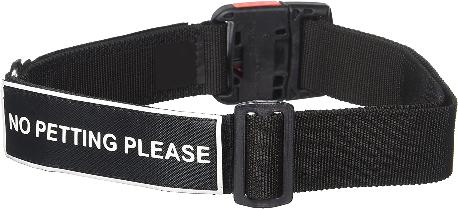 Dean and Tyler Patch Collar , Nylon Dog Collar with NO PETTING PLEASE Patches  Black  Size  Large  Fits Neck 26Inch to 37Inch