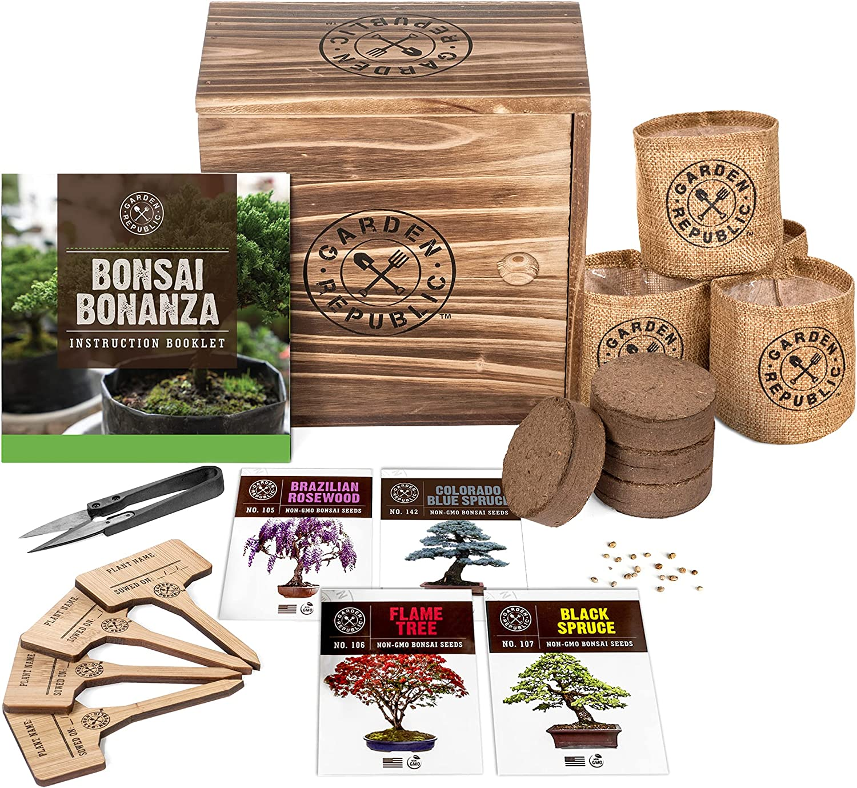 Amazon Com Bonsai Tree Seed Starter Kit Mini Bonsai Plant Growing Kit 4 Types Of Seeds Potting Soil Pots Pruning Shears Scissor Tool Plant Markers Wood Gift Box Indoor Garden Gardening