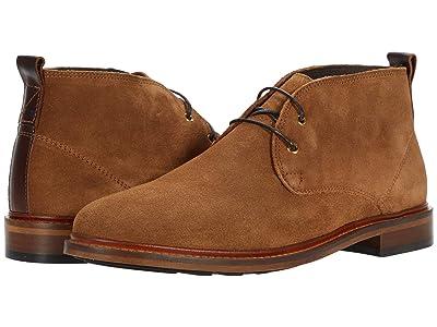 Shoe The Bear Phoenix S (Tobacco) Men