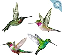 Anti-Collision Window Clings to Prevent Bird Strikes on Window Glass - Set of 4 Humming Bird Window Clings