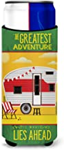 Caroline's Treasures Greatest Adventure Retro Camper Desert Michelob Ultra Hugger for Slim Cans, Multicolor