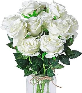Best big long stem roses Reviews