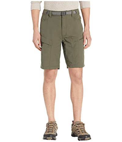 The North Face Paramount Trail Shorts (New Taupe Green) Men
