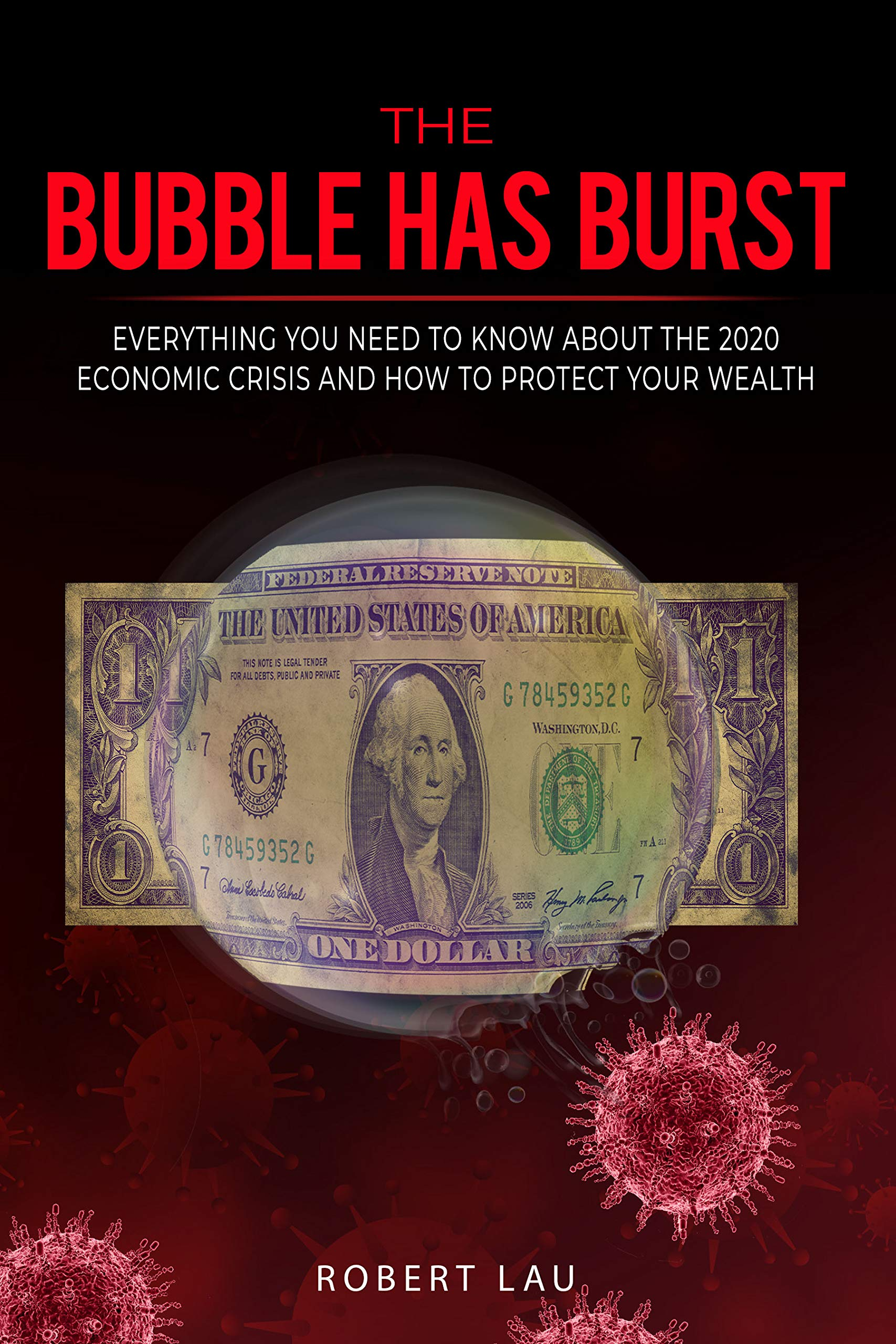 The Bubble Has Burst: Everything You Need to Know About the 2020 Economic Crisis and How to Protect Your Wealth