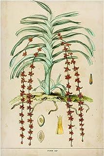 Bilderwelten Pizarra magnética - Vintage Board Exotic Palms IV 90x60cm