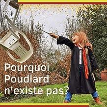 Pourquoi Poudlard n'existe pas?