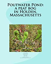Poutwater Pond: a peat bog in Holden, Massachusetts