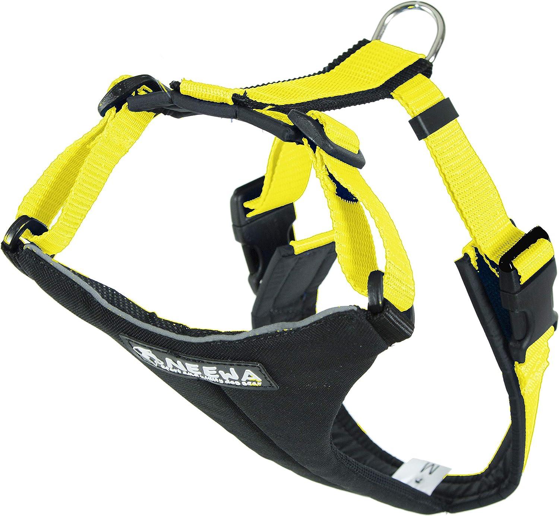 Rare Neewa Dog 2021new shipping free Running Hiking Harness