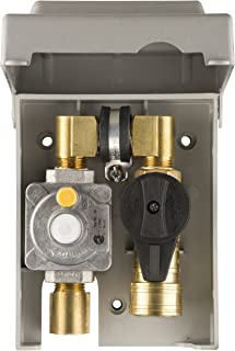 Burnaby Manufacturing G0101-2#-5G-50 Gas Plug 2-Gas Outlet Box with 1/2-Inch Inlet and 3/8-Inch Outlet, Grey PVC Enclosure