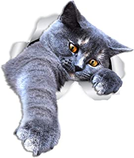 Winston & Bear Playing Grey Cat Wall Decals - 2 Pack - Grey Shorthair Cat Toilet Sticker – 3D Cat Car Window and Bumper Sticker - Retail Packaged Gray Cat Lover Gifts