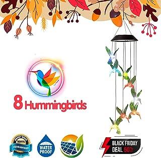 solar hummingbird bath
