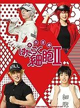 体内活劇「はたらく細胞」II(完全生産限定版) [Blu-ray]