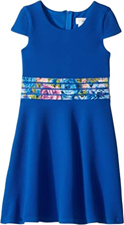 Eliza J Sleeveless Fit Flare Dress Clothing Navy At 6pm Com