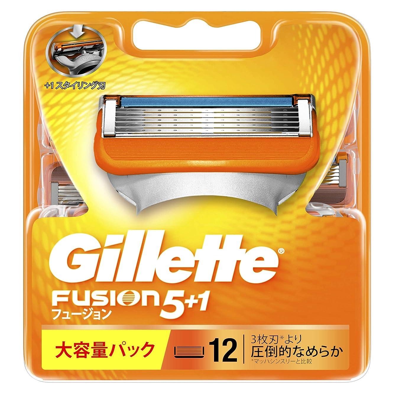 レインコート消毒する液体ジレット フュージョン5+1 マニュアル 髭剃り 替刃 12コ入