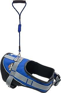 DOGHELIOS 'Bark-Mudder' Easy Tension 3M Reflective Endurance 2-in-1 Adjustable Pet Dog Leash and Harness, Medium, Blue