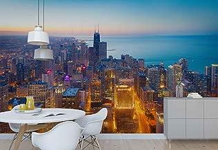 Best chicago cityscape wallpaper Reviews