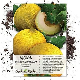 Seed Needs, Golden Beauty Casaba Melon (Cucumis melo) 100 Seeds Non-GMO