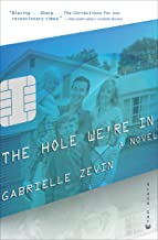 The Hole We're In: A Novel