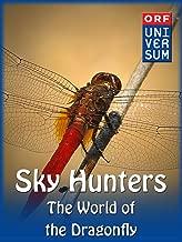 Best fly predator video Reviews