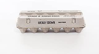 Guardian Generic A Jumbo Egg CARTONS by Falcon PACKAGING-125pcs