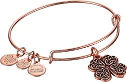 Alex and Ani - Path of Symbols-Four Leaf Clover IV Bangle