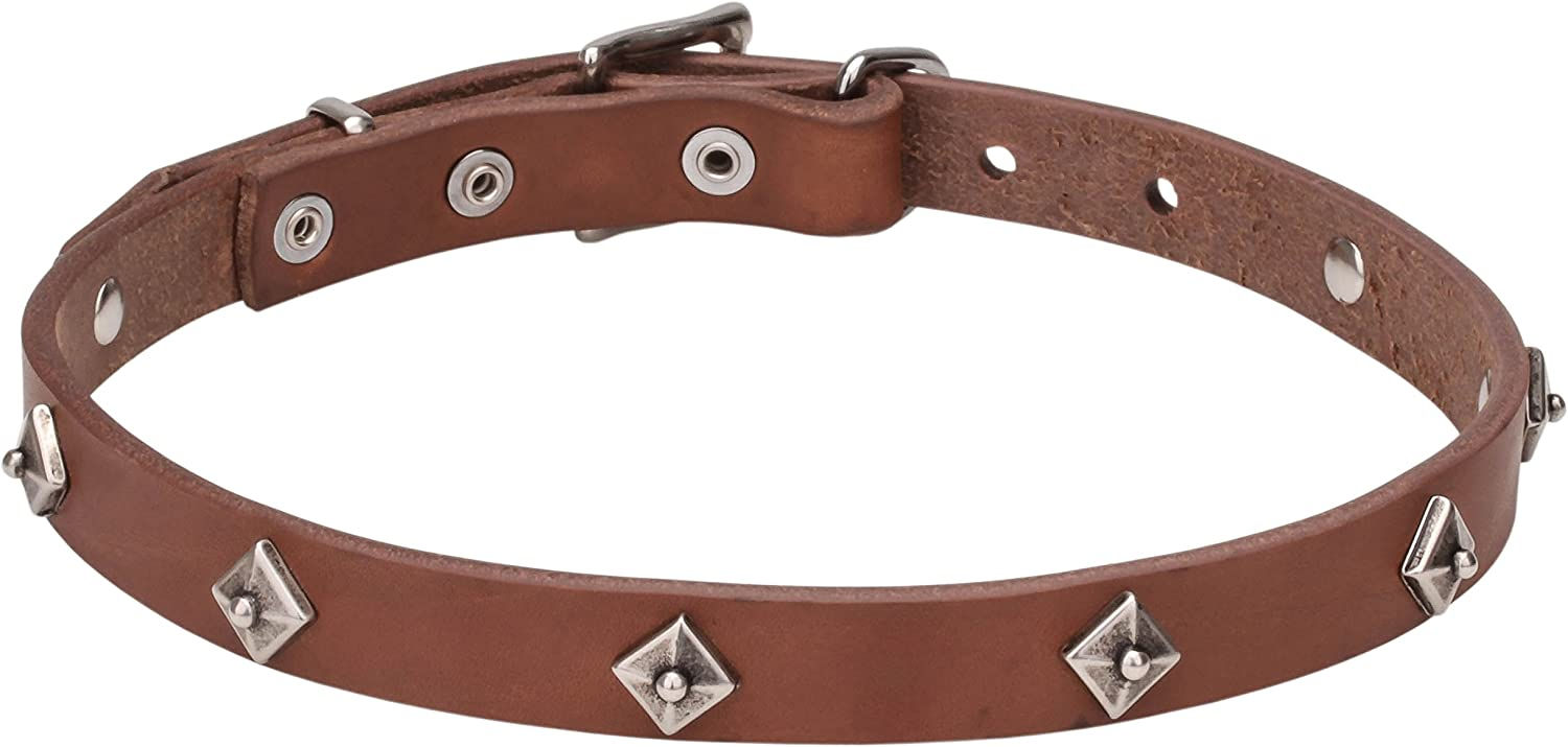 31 inch Tan Narrow Leather Studded Dog Collar with Chrome Plated Studs   Cosmic Stars   4 5