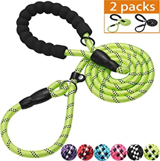 haapaw 2 Packs Slip Lead Dog Leash with Comfortable Padded Handle Reflective, Mountain Climbing Rope Dog Training Leashes for Large Medium Small Dogs(6 FT)