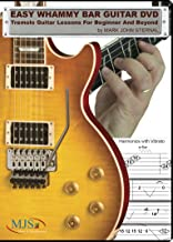 EASY WHAMMY BAR GUITAR Tremolo Guitar Lessons For Beginner and Beyond
