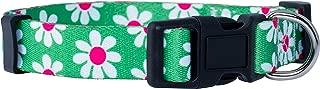 Flower Dog Collar | Custom Paisley | 12 Floral Patterns | Adjustable Small, Medium, Large | Cute Summer and Spring Design