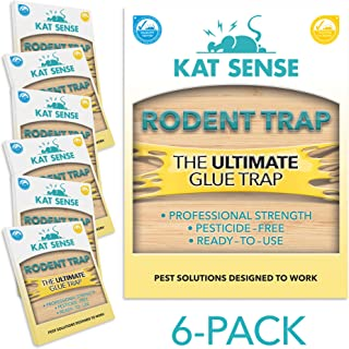 Kat Sense Glue Traps for Mice and Rats, Set of 6 Large Sticky Glue Board Trays for Catching Spiders, roaches, Bugs, Crickets and Household pests