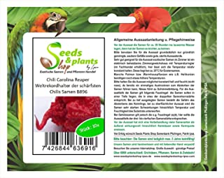 Stk - 10x Chili Carolina Reaper Weltrekordhalter der schärfsten Chilis Samen B896 - Seeds Plants Shop Samenbank Pfullingen Patrik Ipsa