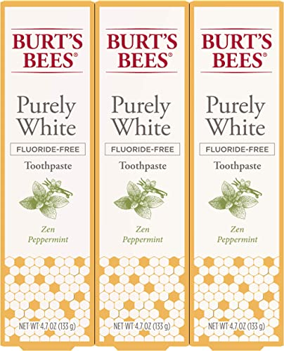 Burt's Bees Toothpaste, Natural Flavor, Fluoride Free Purely White, Zen Peppermint, 4.7oz 3 Count