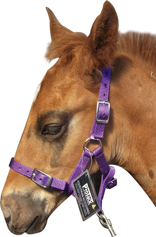 Trilanco Protack Adjustable Headcollar