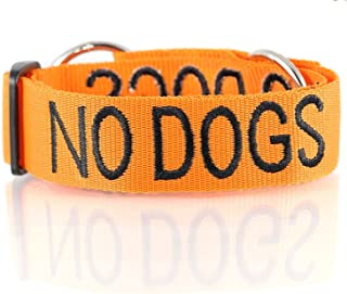 NO DOGS Orange Color Coded Semi-Choke Dog Collar (Not Good with Other Dogs) Prevents Accidents by Warning Others of Your D...