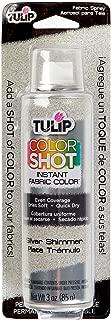 Tulip ColorShot Instant Fabric Color 3oz. Silver Shimmer