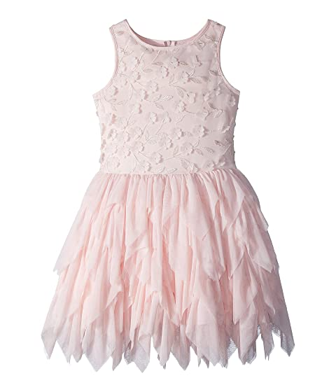 793cd42354 Nanette Lepore Kids Embroidered Tulle Dress w  Matte Satin (Little ...