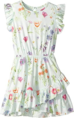 Printed Knit Ruffle Dress (Toddler/Little Kids)