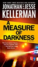 A Measure of Darkness: A Novel (Clay Edison Book 2)