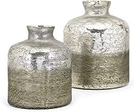 Imax 13859-2 Zaara Ombre Vases (Set of 2), Gray