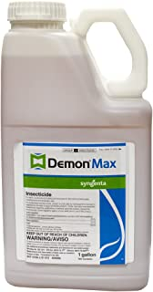 demon max carpenter bees