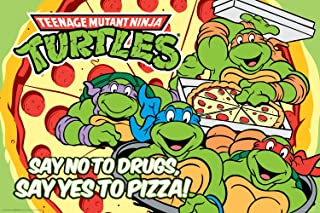 NMR 24894 TMNT Retro Decorative Poster