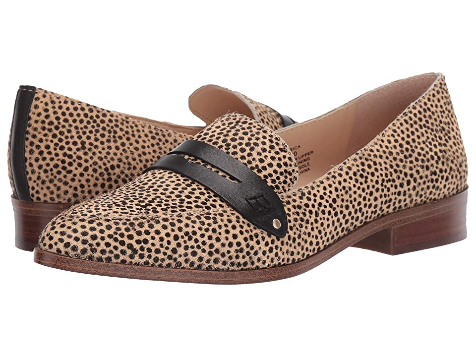 SOLE / SOCIETY Jessica (Cheetah Dot Dotted Haircalf) Women