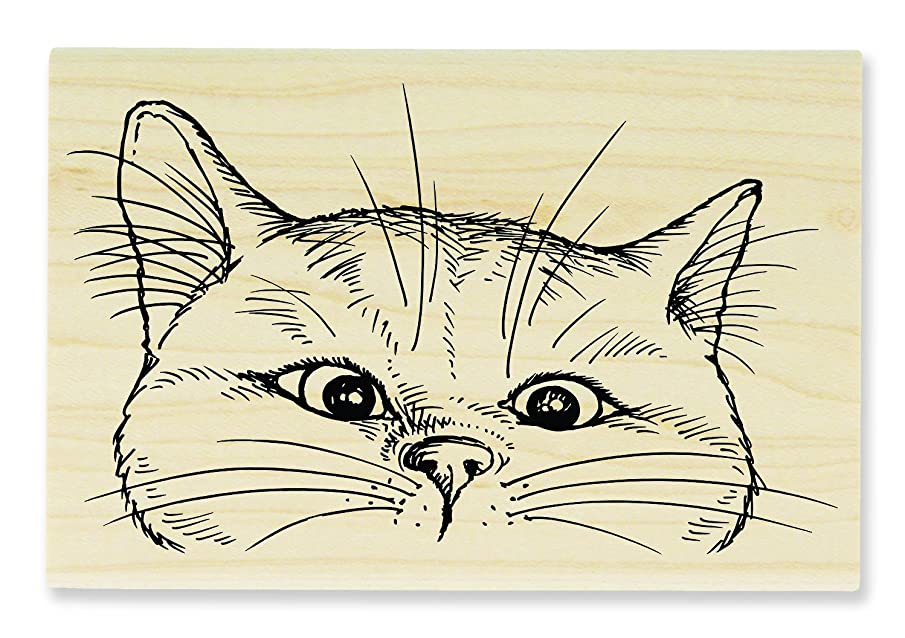 STAMPENDOUS Wood Rubber Stamp, Nosey Cat ? nogn257477